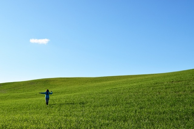 Picture of a person in a field.